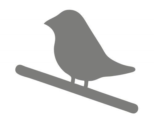 Vogel zoekt baas