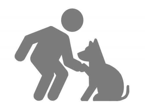 Risicoanalyse honden